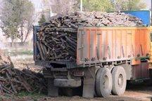 19تن چوب قاچاق در لرستان کشف شد