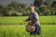 پیمانی برای پیوند کتاب و کشاورز