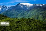 حفاظت از جنگلهای هیرکانی چشم انتظار اعتبار