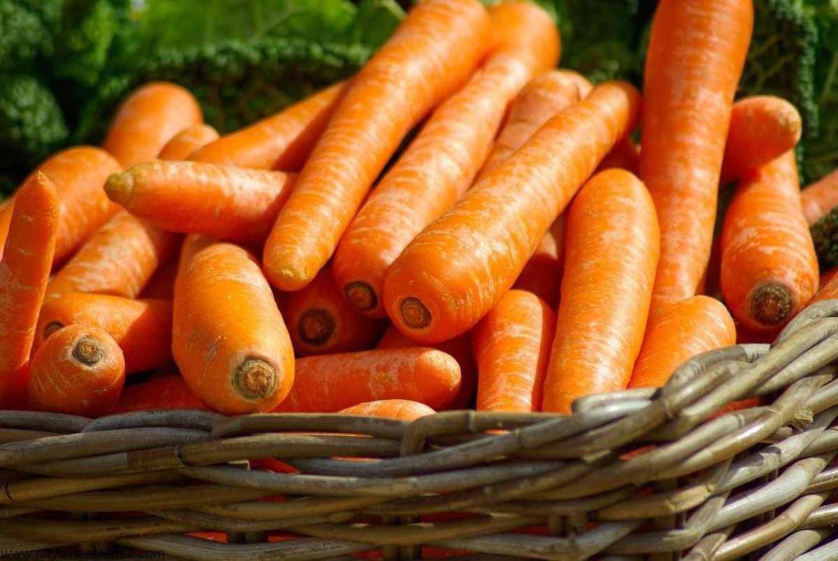 دو دلیل اصلی گران شدن هویج مشخص شد!