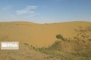فرسایش بادی سالانه ۳۳۰ میلیارد ریال به استان سمنان خسارت میزند