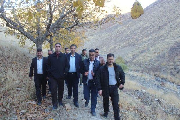 کاشت ۱۰۰ هزار اصله نهال در دره گردو اراک هدفگذاری شد