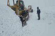 سرنشینان ۷۰ خودروی گرفتار در برف تاراز اندیکا نجات یافتند