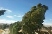 وزش باد گرم گاهی شدید تا فردا در گیلان