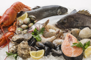 ضعف نظارت قیمت ماهی از مزرعه تا بازار