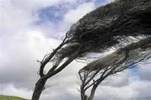 تند باد اردبیل را فرا می گیرد  هوای ابری و سرد طی روزهای آینده بر اردبیل حاکم می شود