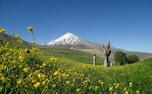 واگذاری مدیریت قله دماوند به فدراسیون کوهنوردی تکذیب شد