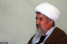 آیت الله محمد مومن که بود؟/چه مسئولیتهایی بر عهده داشت؟/نظریه اش درباره ولایت فقیه چه بود؟