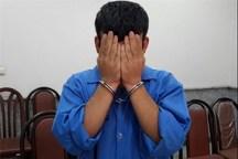 سارق حرفه ای با 48 فقره سرقت در ملارد دستگیر شد