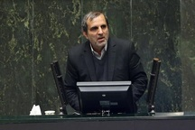 یوسفنژاد: امیدواریم قول رییس مجلس درباره سپنتا نیکنام محقق شود