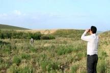 155متخلف محیط زیست در اردبیل به دادگاه معرفی شدند
