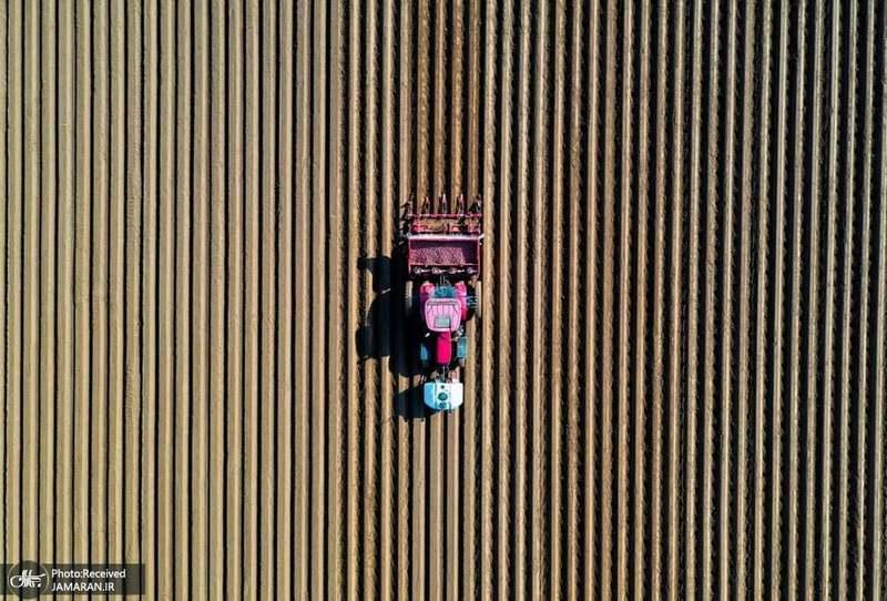 منتخب تصاویر امروز جهان- 30 فروردین 1400