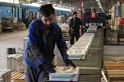 اجرای طرح هایی برای کمک به رونق تولید و حمایت از کارگران