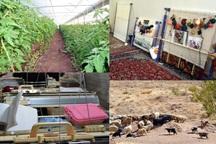 تسهیلات روستایی در طرح های بزرگتر هزینه شوند