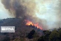 مهار آتشسوزی جنگل های ارسباران در مرحله لکهگیری است