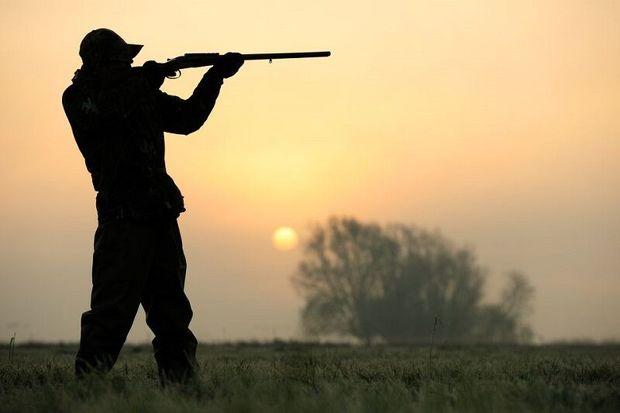 مجوز شکار قانونی در خراسان جنوبی صادر میشود