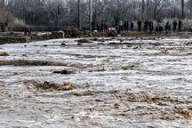 خسارت سیل به هزار منزل و دامداری سنتی در تاکستان