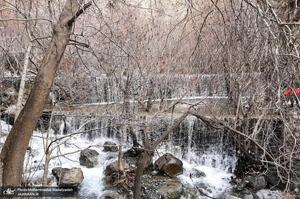 آخرین روزهای زمستان قرن در «درکه»