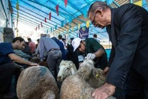 6 گروه بر ذبح دام های مهاباد در روز عید قربان نظارت می کنند