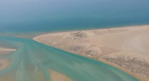 آلودگی نفتی در ساحل گناوه وجود ندارد