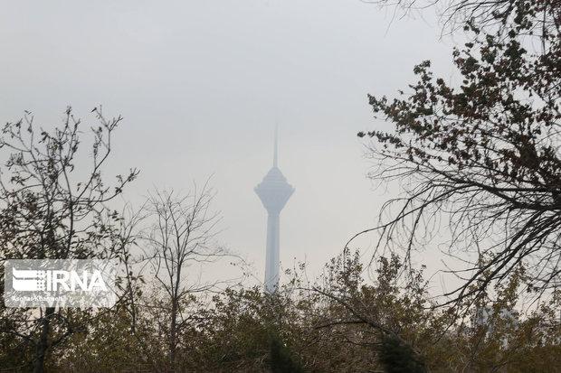 تهران روزهای ناسالم کمتری داشت اگر قانون هوای پاک اجرایی میشد
