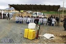 هیچ موردی از بیماری آنفلوانزای فوق حاد پرندگان در کردستان مشاهده نشده است
