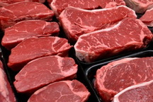 مرحله جدید عرضه گوشت گرم در فروشگاه های شهروند آغاز شد