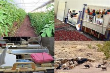 820 میلیارد ریال تسهیلات اشتغال به روستاییان قم پرداخت شد