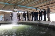 وزیر جهاد کشاورزی از مرکز حفاظت از ماهیان گرم آبی زهکدیدن کرد