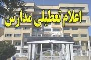 آنفلوانزا مدارس استان کهگیلویه و بویراحمد را تعطیل کرد