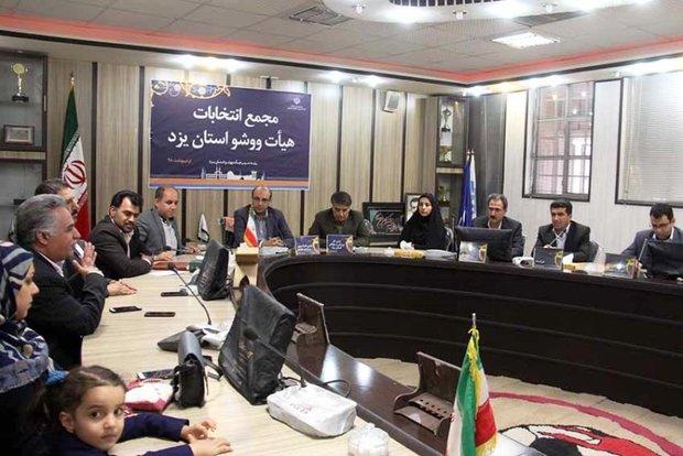 رئیس فدراسیون: استان یزد، ظرفیت های خوبی در ووشو دارد