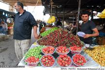 قیمت میوه در بازار نسبتا متعادل است