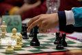 مسابقات بین المللی شطرنج جام کارون در اهواز برگزار میشود