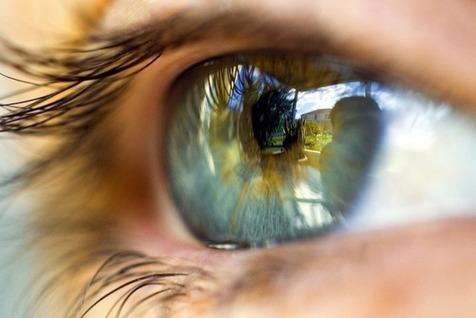 شناسایی فرایند بازسازی نورون ها در چشم و مغز