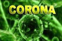 آزمایش ۱۲ مورد جدید کرونا در کرمان مثبت اعلام شد