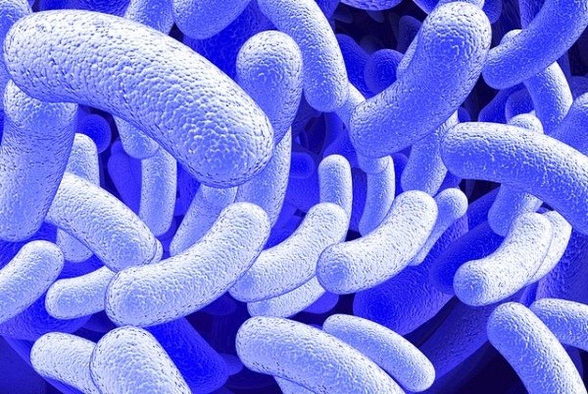 چرا میکروبها روی پوست تاثیری ندارند؟