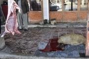 قصابان غیرمجاز روستای نی به زندان محکوم شدند