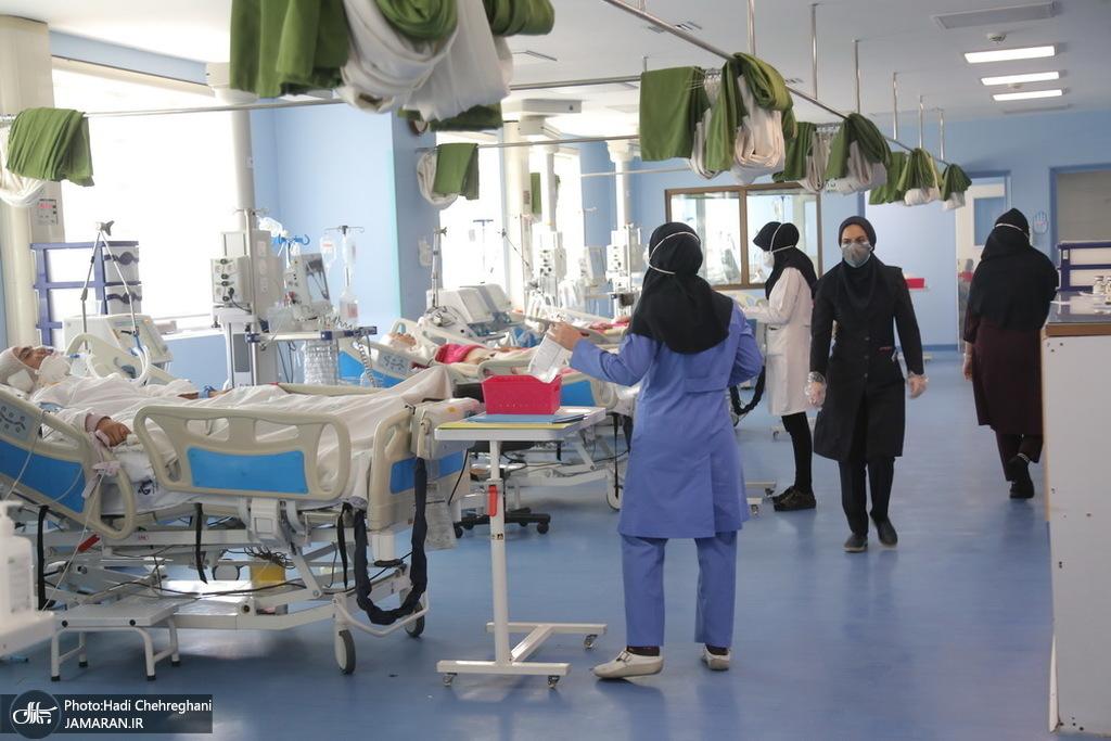 نیمی از پزشکان متخصص عفونی مشهد به کرونا مبتلا شده اند