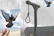 زندانی محکوم به اعدام پس از ۱۶ سال در یزد آزاد شد
