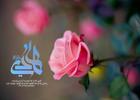 مولودی میلاد امام هادی علیه السلام/ سیدمجید بنی فاطمه+ دانلود