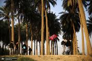 ۹۹ درصد زائران اربعین به کشور بازگشتند