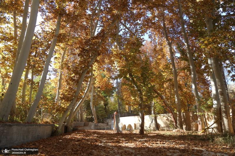 طبیعت پاییزی روستای اَوِل قم