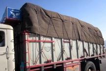 6 هزار قلم انواع کالای قاچاق در شهرستان البرز کشف شد