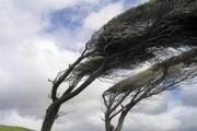 پیشبینی وزش باد شدید در جنوبشرق استان کرمان