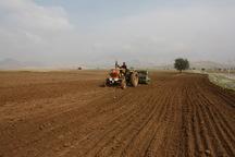 کشت پاییزه محصولات کشاورزی در لالی آغاز شد
