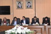 استاندار فارس: رقابتپذیری فرش با افزایش کیفیت و کاهش قیمت ممکن خواهد بود
