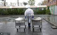 تعداد فوتی های کرونا در تهران چقدر شد؟/ آمار نگران کننده مدیر بهشت زهرا از جان باختگان کرونایی