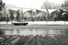 دانشگاه تهران سفیدپوش شد + عکس