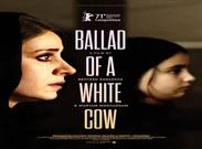 رونمایی از پوستر بینالمللی فیلم «قصیده گاو سفید»+ عکس