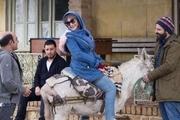"""""""جهان با من برقص"""" به جدول اکران سینما فلسطین همدان اضافه شد"""